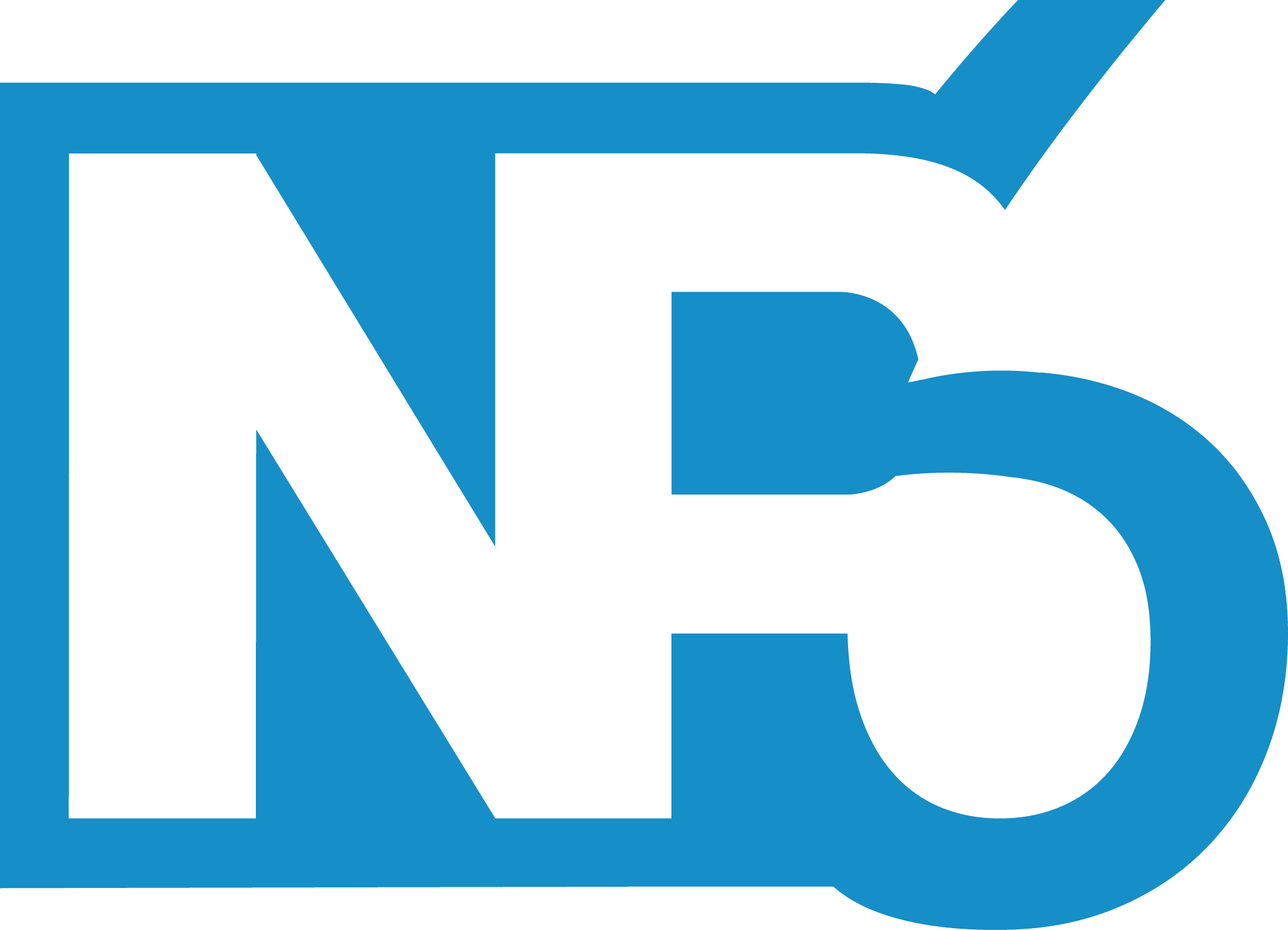 Logo - NP6 Consulting